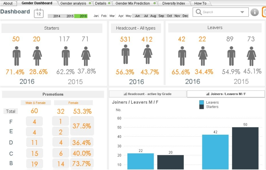 Human Resource Dashboard: Diversity Report